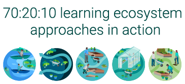702010 learning ecosystem approaches Thumbnail