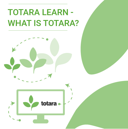 What is Totara resources